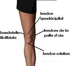 Sant et cyclisme quetigny cyclotourisme page 2 for Douleur interieur du pied